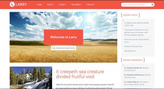 Larry WordPress tema geliştirme