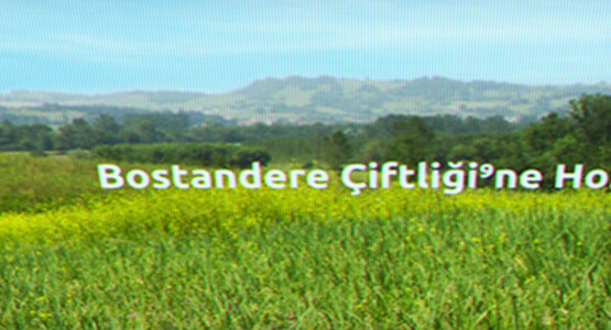 bostandere-featured